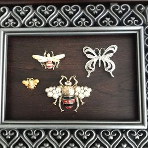 Bug me!!  Brooches
